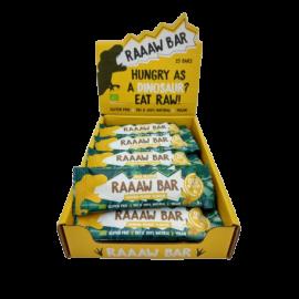 Gold Nutrition® RAAAW BAR 15x35g, beljakovinska čokoladica