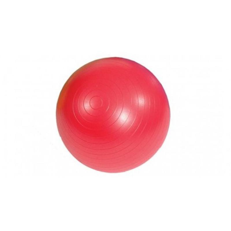 Žoga za vadbo MSD 55 cm