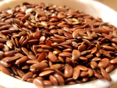 Laneno seme - pomen v prehrani in uporaba