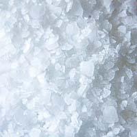 Kokosov sladkor – zdrava alternativa škodljivemu belemu sladkorj